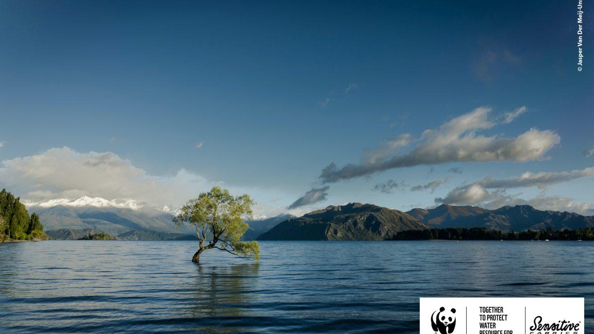 Eurojersey se aliază cu WWF Italia pentru protejarea râurilor